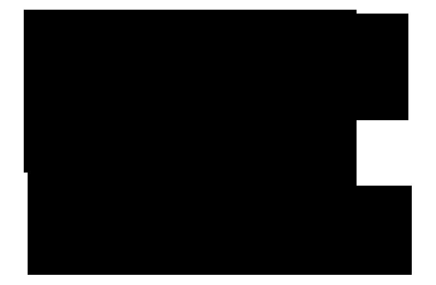 CAI - Computer Aid, Inc.