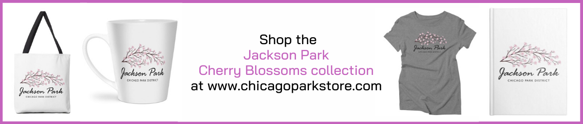 Cherry Blossoms Product Collection on www.chicagoparkstore.com