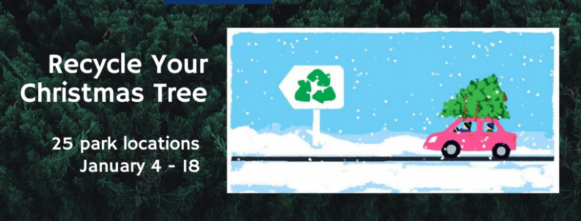 Christmas Tree Recycling - 25 park locations, January 4-18