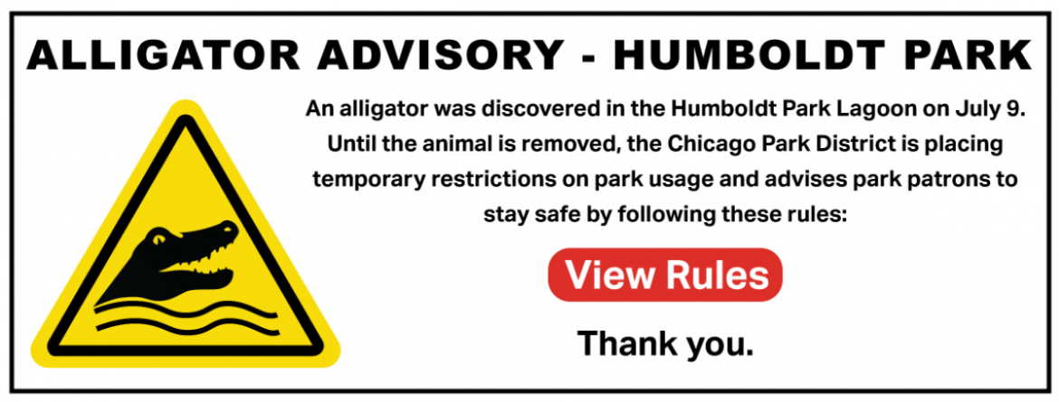 Alligator Advisory - Humboldt Park.  Follow the established rules until the alligator is removed from Humboldt Park Lagoon.  Click on this image to view the rules.