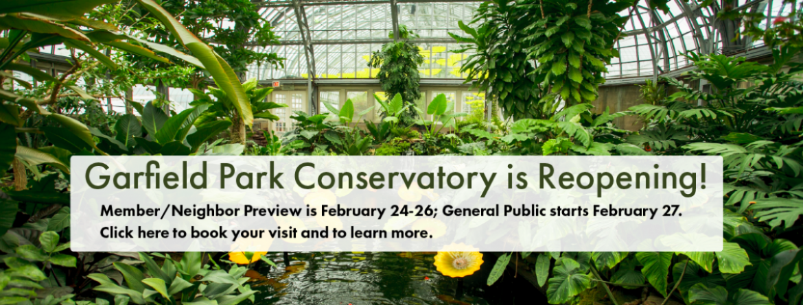 Garfield Park Conservatory is Reopening!  Member/Neighbor preview is February 24-26; general public starts February 27.  Click here to book your visit.