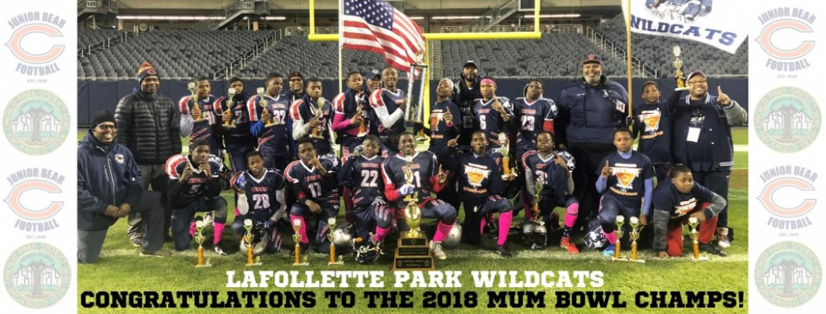 LaFollette Park Wildcats football team gather for a photo at Soldier Field after winning the 2018 Mum Bowl.
