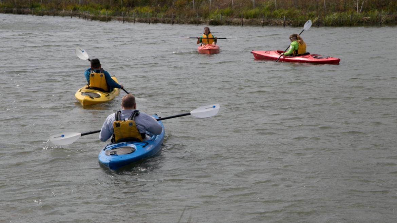 Volunteers enjoying kayaking in Northerly Island's lagoon.
