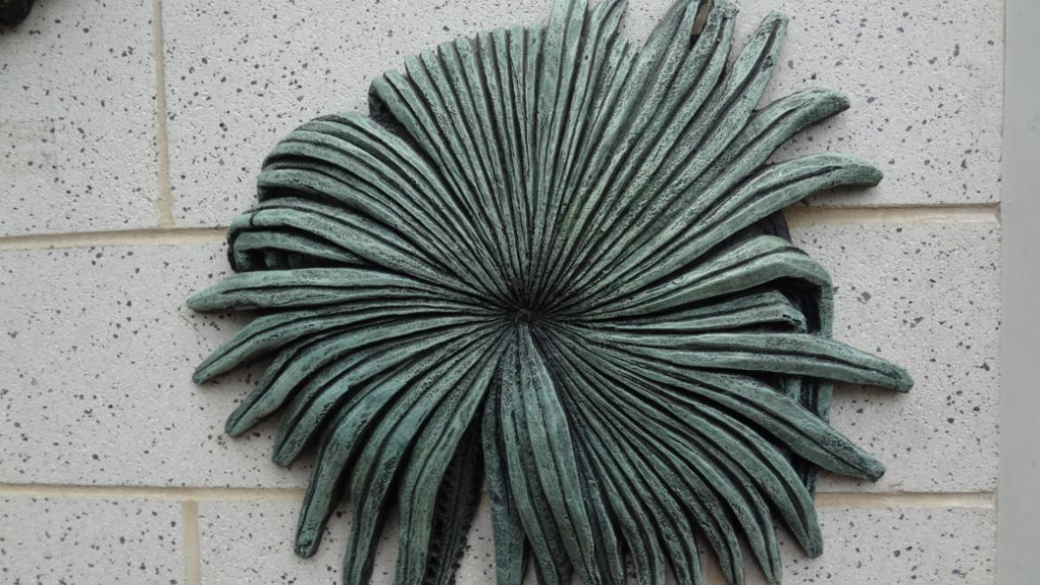 Some Palm trees have fan leaves, as depicted in this detail of the Palm House sculptural relief.