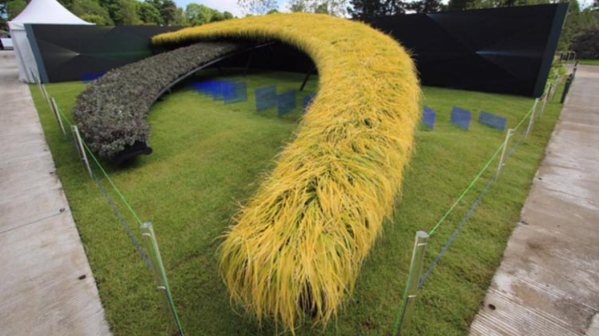 "We participated in ""BLOOM"" Ireland's largest garden festival. With our garden, ""Bridge the Gap"", we"