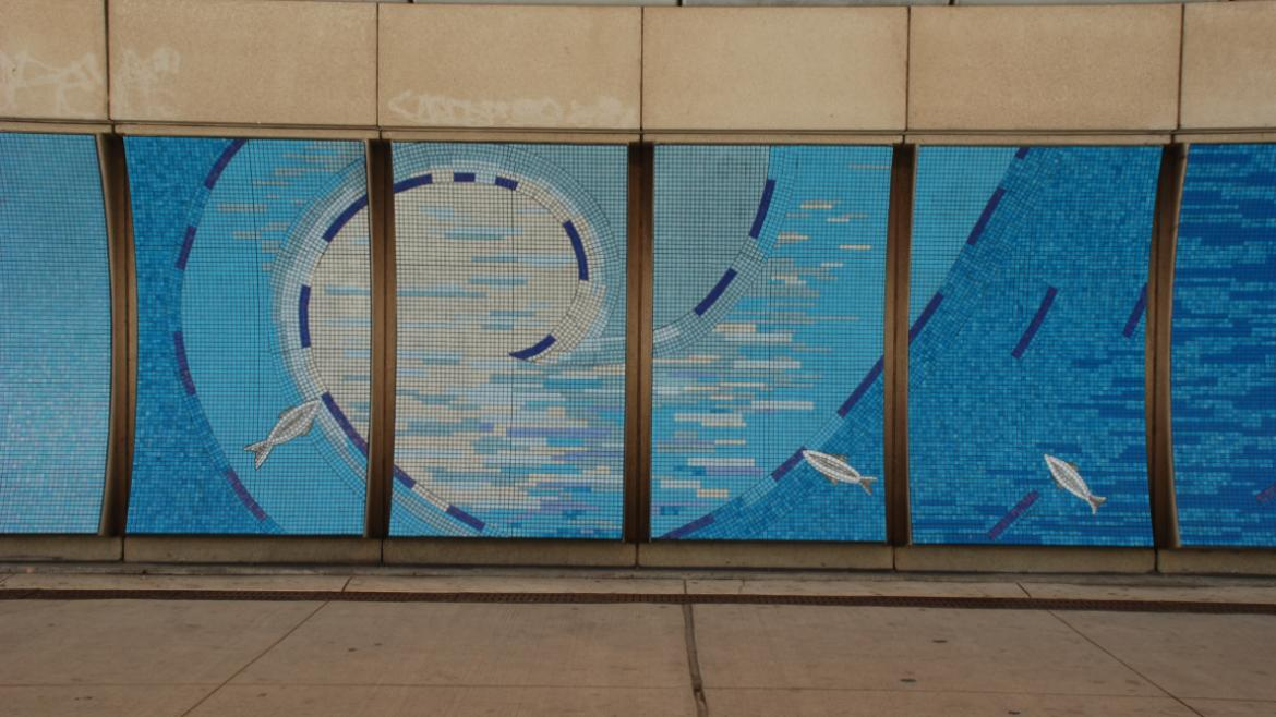 Underwater scenes include fish swimming in the swirling water, 2012, photo by James Iska.
