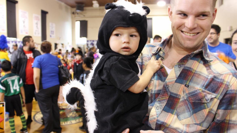A baby skunk!