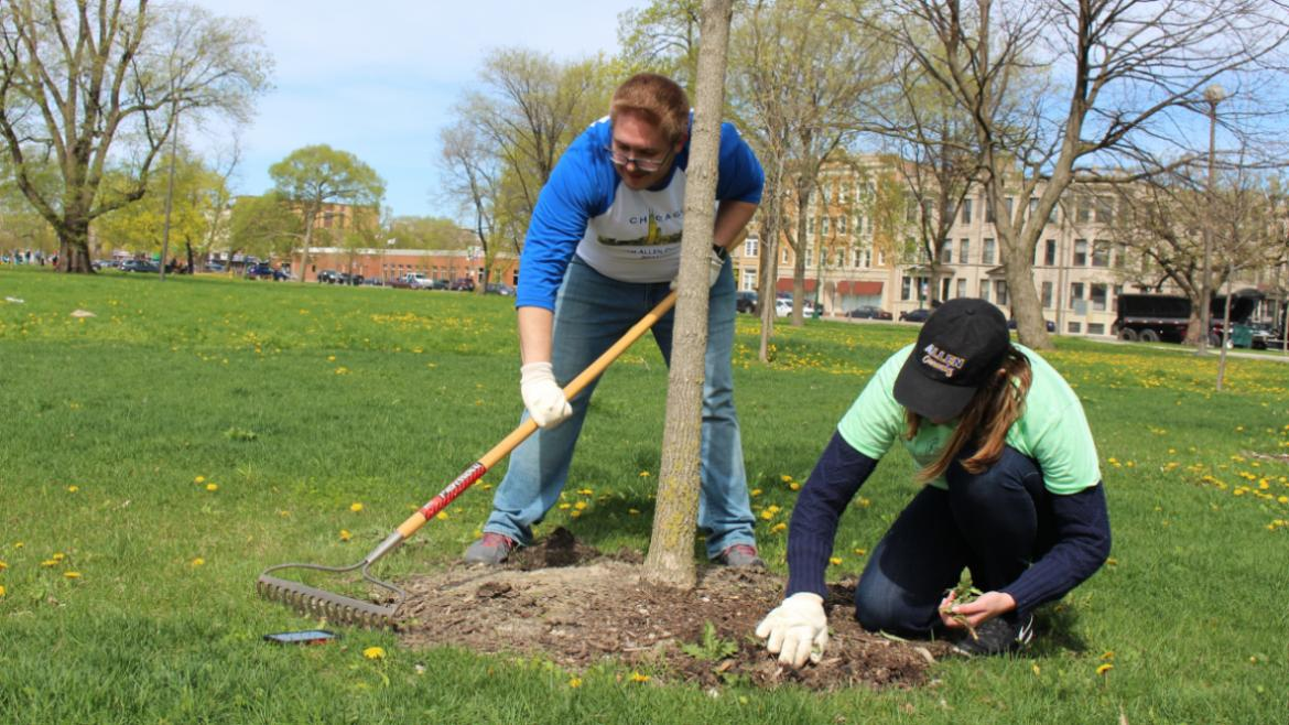 Volunteers mulched trees at Humboldt Park