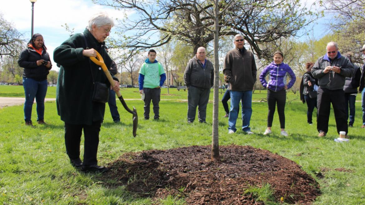 Planting and dedicating new trees to community members at Humboldt.