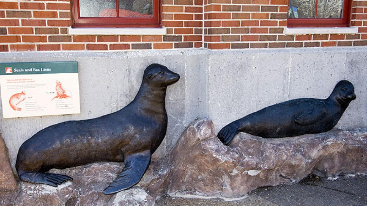 The Seal and Sea Lion bas-relief sculptures help visitors learn about the two species, 2010.