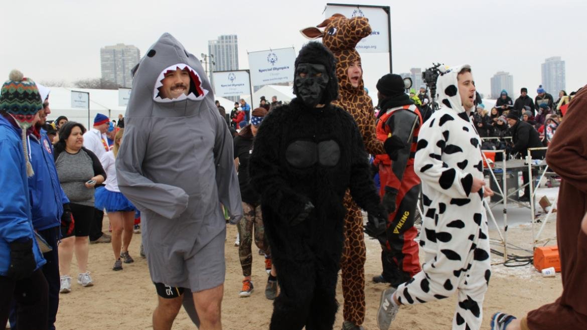 Even the zoo animals got into the Polar Plunge spirit.