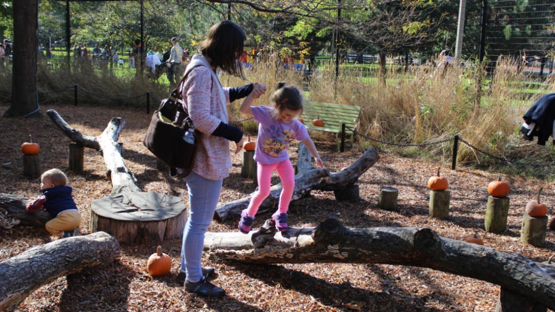 having fun in the nature center