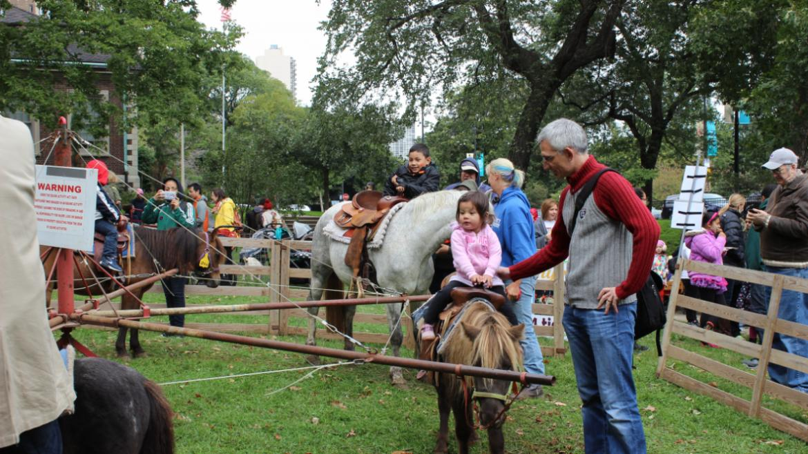 The kids loved the pony rides.