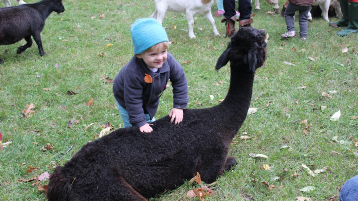 The petting zoo is a hit with the kids!