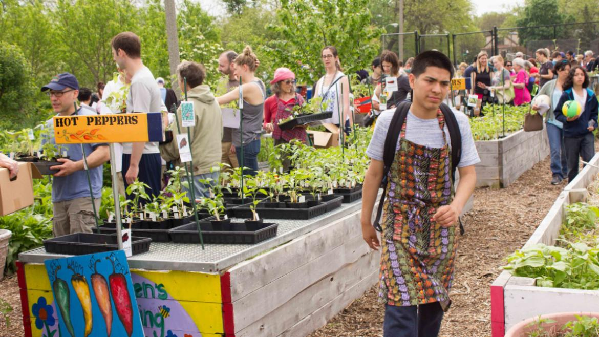 Thanks for supporting the Kilbourn Park Organic Greenhouse.