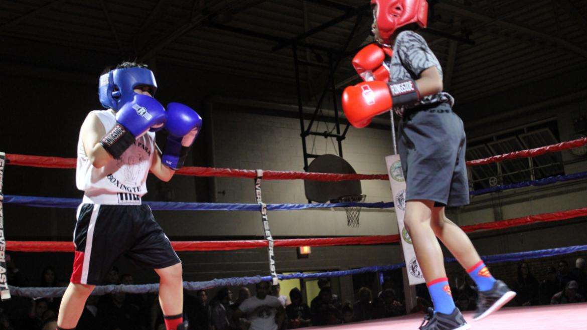 Hamlin Park Boxing Showcase.