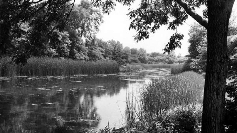 Jen Jensen's prairie river in Humboldt Park, ca. 1935