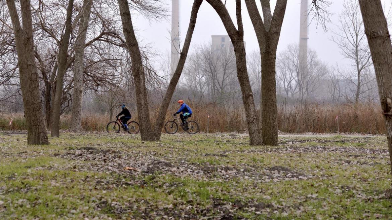 Big Marsh Park Trails.