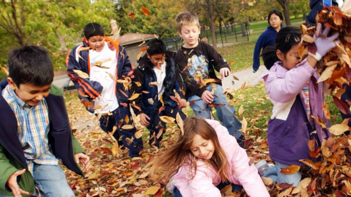 View the Fall Park Programming Schedule Online Today!