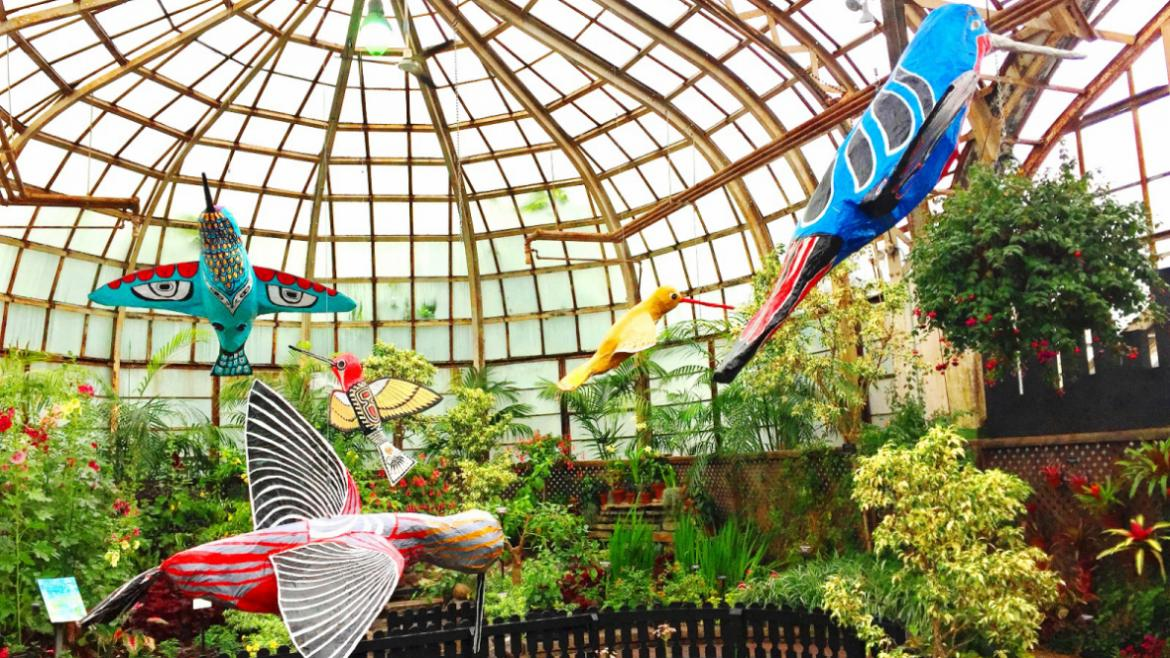 "The 2018 Lincoln Park Conservatory Summer Tropical Flower Show ""Flower-Kissers"" is open to the public."