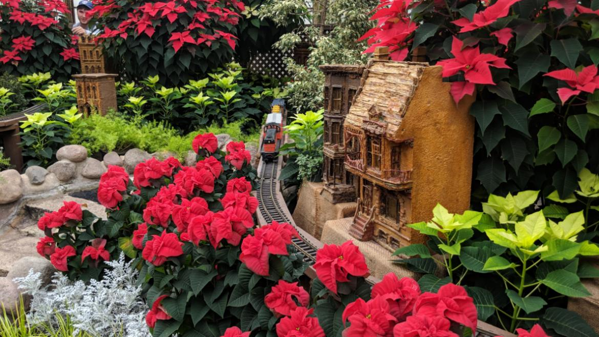 Admission to the 2018 holiday flower shows is free.