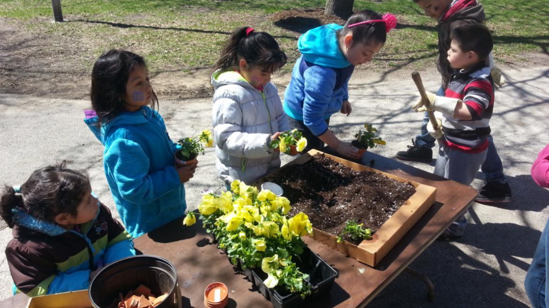 Online Registration for Spring Park Programming