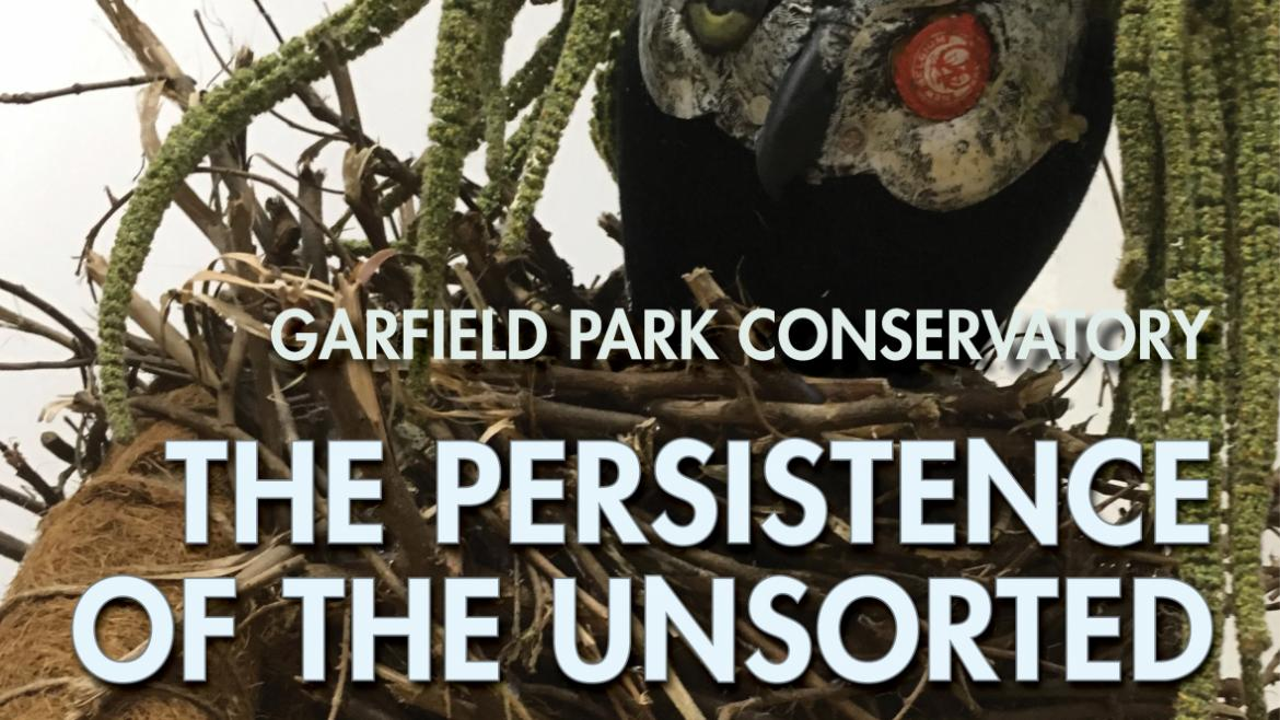 The Persistence of the Unsorted, on view April 26, 2018 – October 31, 2018 at the Garfield Park Conservatory.