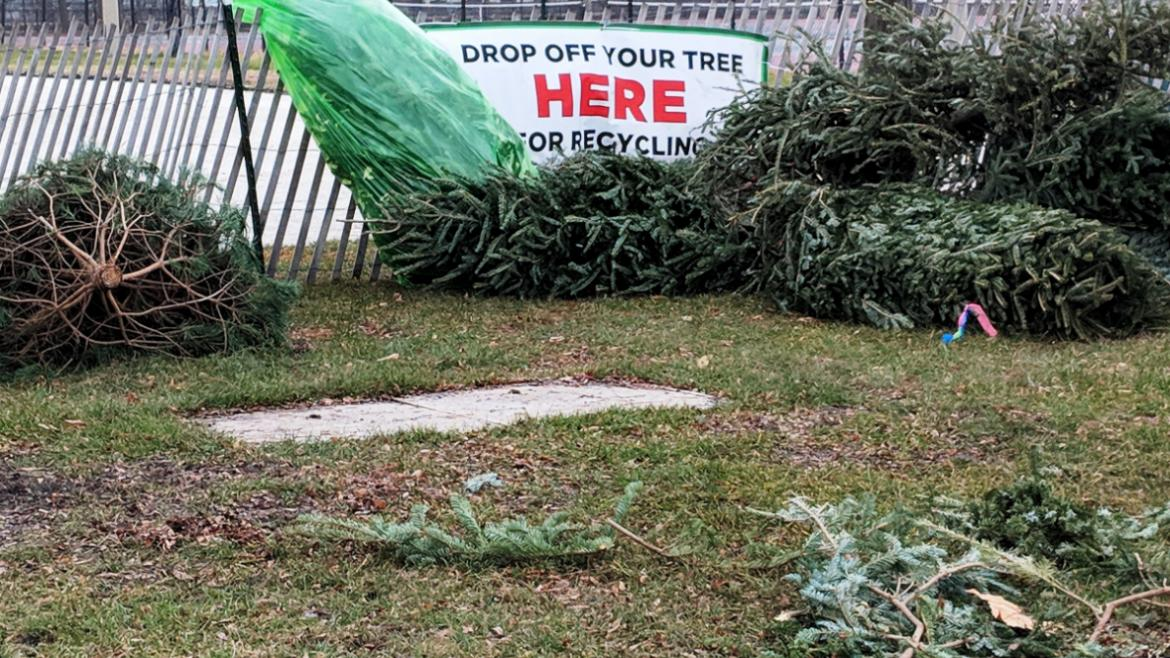 Recycle your holiday tree at 25 park locations.