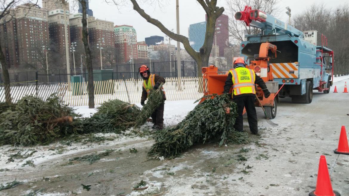 Holiday Tree Recycling until January 20, 2018