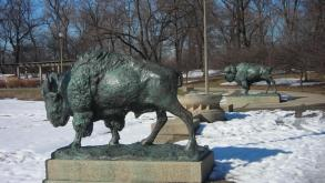 Plaster versions of the World's Fair Bison were displayed in Garfield Park in 1909.