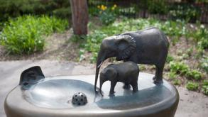 Suyeoka's small bronze elephants are highly detailed, 2014, photo by Michael Knapp, Illinois State G