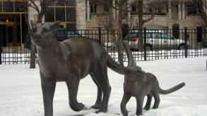The Mother and Child Mountain Lions were sculpted by Boban Ilic, 2010.