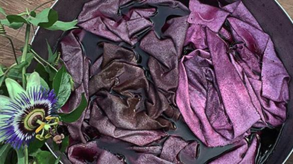 Dyeing Fabric with Garden Plants at Skinner