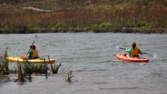 Veterans & Family Kayaking at Northerly Island