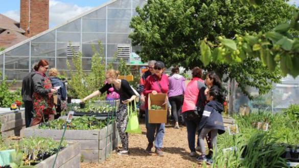 Kilbourn Greenhouse plant sale