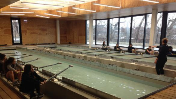 Rowing tank at Clark Park