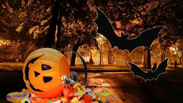 halloween candy and treats at moore