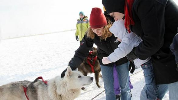 Image result for polar adventure day northerly island