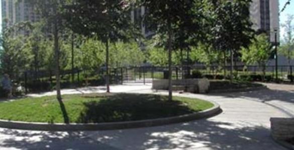 Park no. 546 Dog Friendly Area