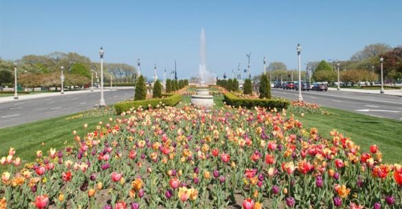 Beau Chicago Park District