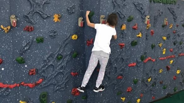 Climbing wall at Harrison Park