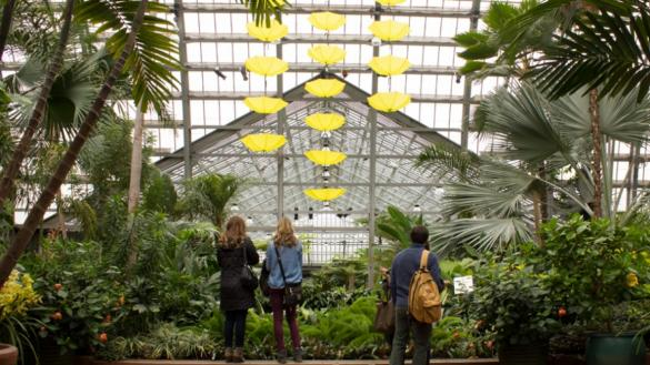 Palm House at the Garfield Park Conservatory