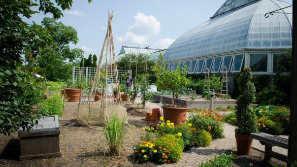 Demonstration Garden at the Garfield Park Conservatory