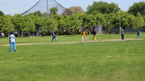 Cricket Field at Warren Park
