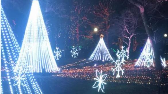 Holiday Lights at Lincoln Park Zoo