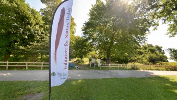 2019 Natural Areas Community Stewardship Workdays | Chicago