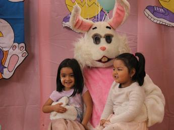 Bunny Egg Hunt