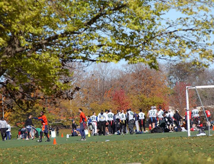 Adults gather for a game of football on a sunny fall day.