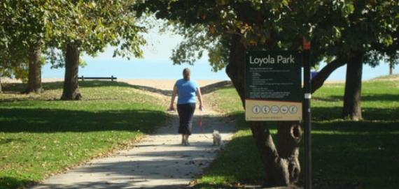 Take a walk along the path at Loyola Park.