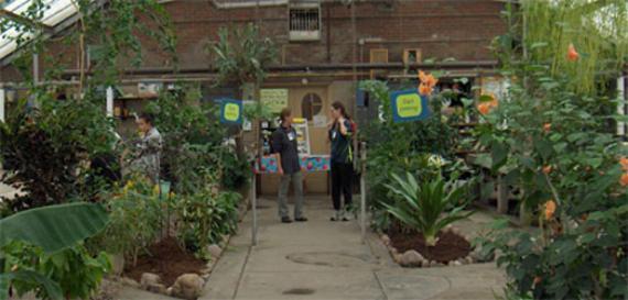 Kilbourn Park - Organic Greenhouse